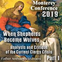 2019 Monterey Conference: Analysis and Critique of the Current Clergy Crisis by Fr. Anthony Mastroeni