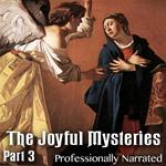 The Joyful Mysteries - Part 3 - Finding Jesus in the Temple