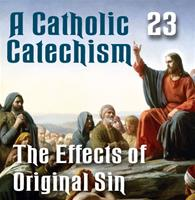 A Catholic Catechism Part 23: Effects of Original Sin